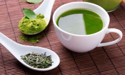 Tomar té verde para adelgazar