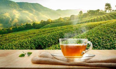 Mitos del té