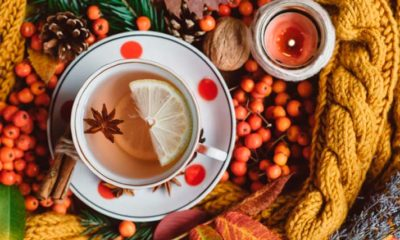 Componentes activos del té