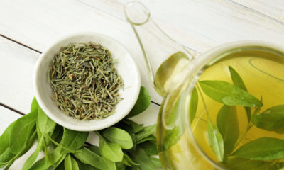 Beneficios del té kukicha